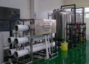 electronic water purification system